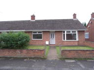 Semi-Detached Bungalow to rent in Glencoe Road, Ipswich...