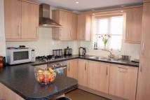 Isabella Road Terraced house to rent