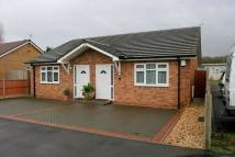 Semi-Detached Bungalow for sale in Ashton Drive...