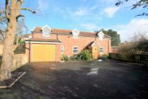 2 bed Detached house to rent in Wells Road, Knowle...