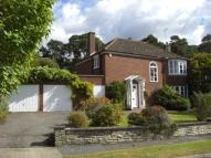 4 bedroom Detached house to rent in Sunninghill SL5