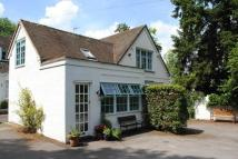Character Property to rent in Buckhurst Road, Ascot...
