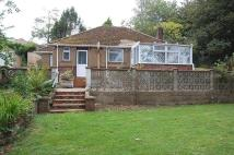Bungalow for sale in Downs Valley Road...