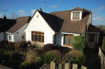 3 bed Bungalow for sale in Woodland Way, Brighton