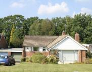 HEATHFIELD Detached Bungalow to rent