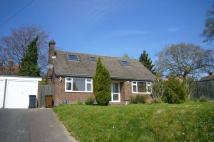 Detached Bungalow in HEATHFIELD