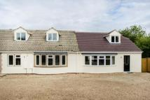 Semi-Detached Bungalow for sale in Foxborough Road, Radley...