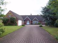 Huthwaite Road Detached Bungalow for sale