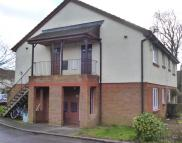 Studio apartment for sale in Petersfield
