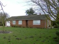 Detached Bungalow to rent in Gedney Hill...
