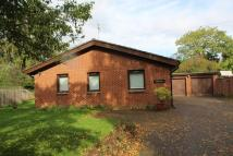 Holbeach Detached Bungalow to rent