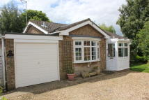 Detached Bungalow in ORCHARD CLOSE, Moulton...