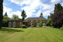 Detached house for sale in Doggetts Wood Lane...