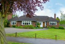 3 bed Detached Bungalow for sale in Bishops Avenue, Northwood