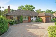 Detached Bungalow for sale in Bishops Avenue, Northwood