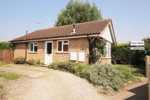 Detached Bungalow for sale in Oak Tree Road, Ampthill
