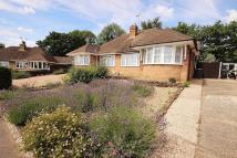 Semi-Detached Bungalow for sale in Cedar Close, Ampthill