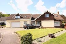 Detached home for sale in Moores Close, Maulden