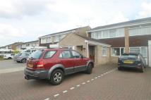 4 bedroom semi detached property to rent in Onslow Crescent...