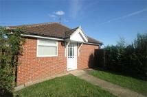 Detached Bungalow to rent in Snowberry Grove...