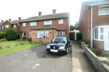 3 bedroom semi detached home to rent in Plume Avenue, COLCHESTER...
