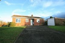 Detached Bungalow in Garden Fields, Great Tey...