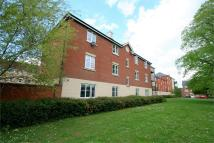 2 bed Flat to rent in Halcyon Close, Witham...