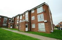 Flat to rent in Falkland Court...