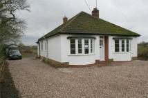 3 bedroom Detached Bungalow in Maldon Road...