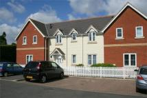 Terraced house to rent in Little Orchard, Kelvedon...