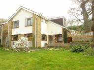 Detached house in Surley Row, Emmer Green...