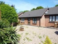 Bungalow to rent in Tynefield Mews, Etwall...
