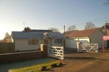 3 bedroom Detached house to rent in Plemstall Lane...