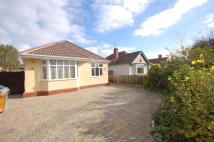 Detached Bungalow for sale in Chester Road, Huntington