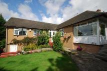 Detached Bungalow for sale in Chester Road, Helsby...