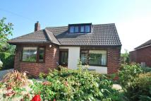 2 bed Detached Bungalow in Old Chester Road, Helsby...