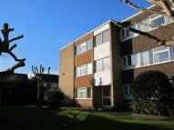 Flat to rent in Cedar Court, Beeston...