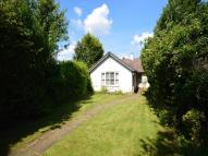 2 bedroom Detached Bungalow in Nackington Road...