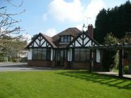 Bungalow in Old Ham Lane, Lenham...