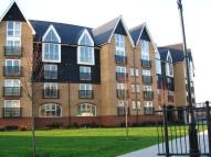 2 bed Flat to rent in Scotney Gardens St....