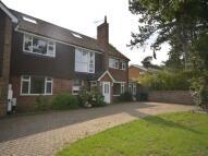 1 bedroom Flat to rent in Pine Lodge Somerfield...