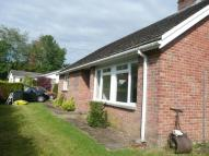 2 bed Detached Bungalow to rent in Meadow View...