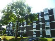Elm Close Bassett Avenue Flat to rent