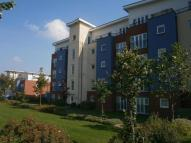 Flat to rent in Alexander Square...