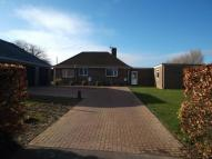 Detached Bungalow in Sack Lane, Bognor Regis...