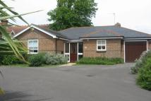 Detached Bungalow to rent in Marquis Way...