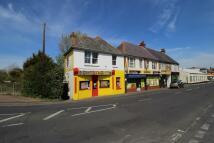 Flat to rent in B Felpham Road...