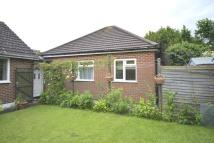 1 bedroom Bungalow in King Charles Road...