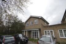 6 bed semi detached house in Upper Brighton Road...