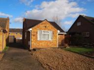 Bungalow to rent in Willow Crescent...
